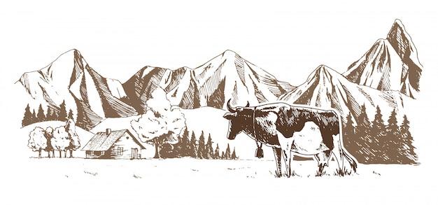 낙농장. 초원에서 소 방목