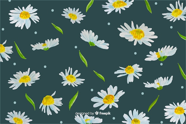 Daisies decorative background watercolor design