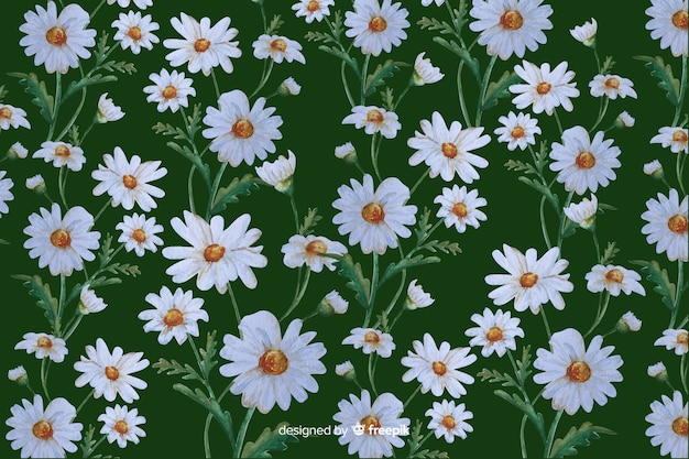 Daisies decorative background watercolor design