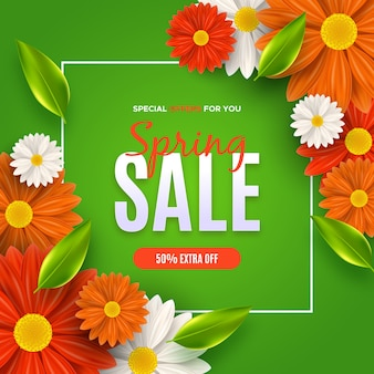Daisies and gerbera flowers spring sale