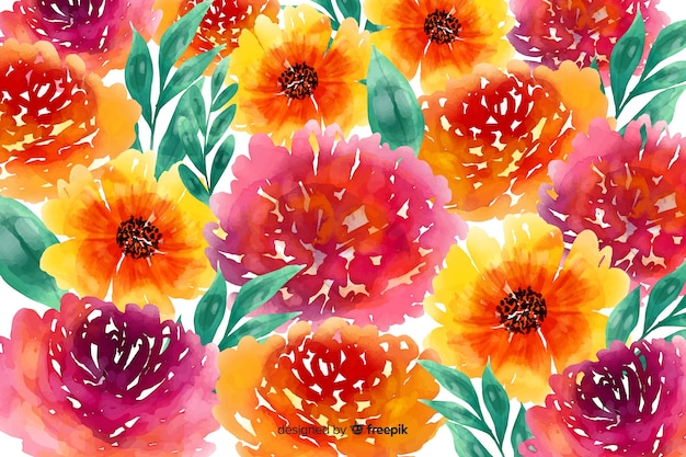 Daisies and roses watercolour floral background