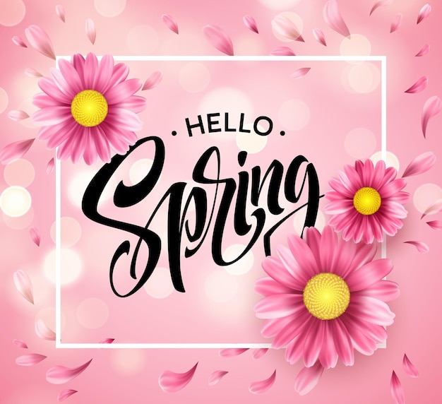 Daisy flower background and hello spring lettering.  illustration
