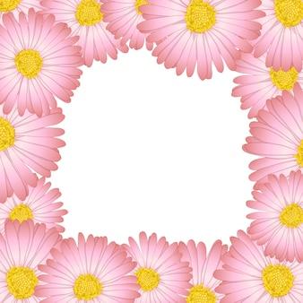 Daisy flower border