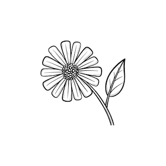 デイジーの花の手描きのアウトライン落書きアイコン。白い背景で隔離の印刷、ウェブ、モバイル、インフォグラフィックの花びらのベクトルスケッチイラストとフィールドデイジーの花。