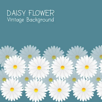 Daisy flower vintage bakground vector