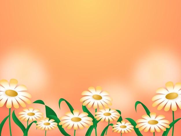 桃の背景に飾られたデイジーの花。