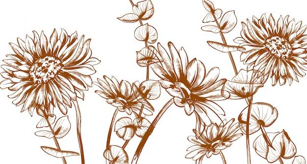 Daisy flowers line art лето цветочные