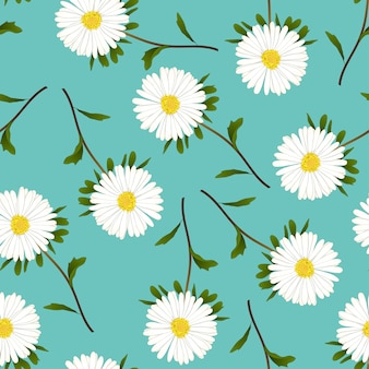 Daisy on Green Teal Background