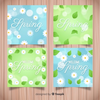Daisy spring card set