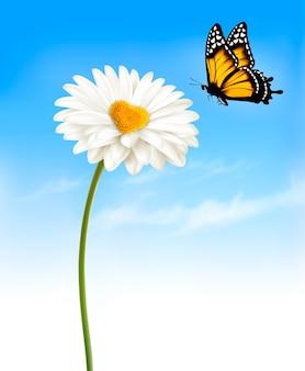Ромашка с серединой в форме сердца и бабочкой.