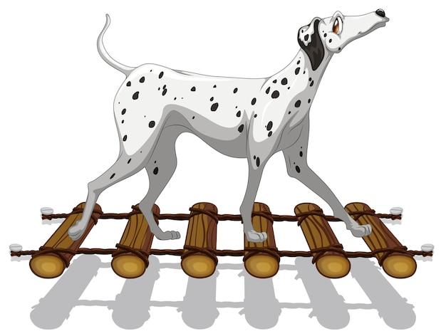 橋を渡るダルメシアン犬