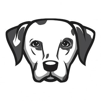 Dalmatian head dog