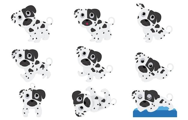 Щенки далматин в разных позах