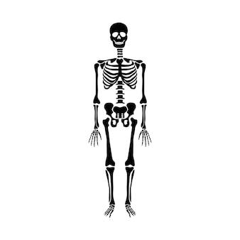 黒の背景に分離された踊るスケルトン。ハッピーハロウィン。ベクトルイラスト