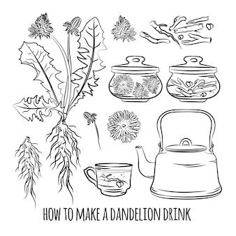 Одуванчик напиток, как сделать, преимущества аптеки, лекарственное растение, ботанический, природа, здоровье, векторная иллюстрация для печати
