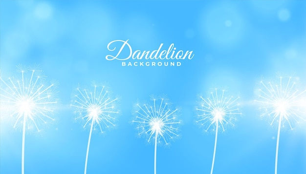 Dandelion flower seeds on blue background