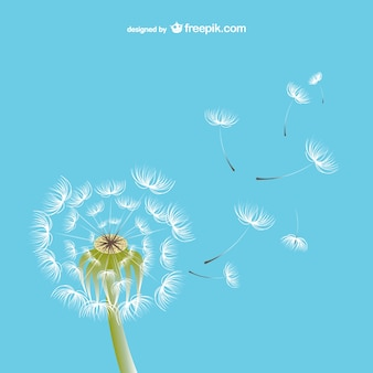 Dandelion illustration vector