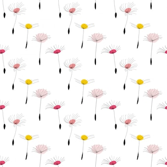 Dandelion seeds on white background