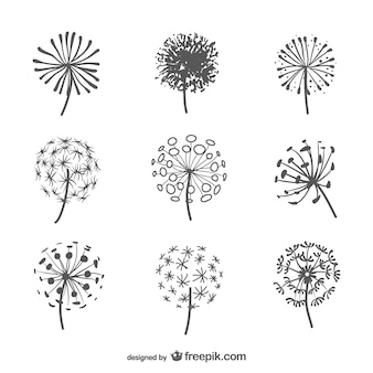 Dandelion silhouettes pack