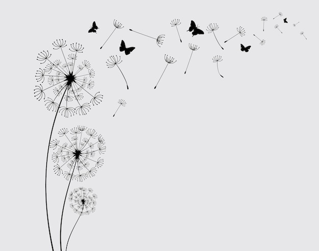 Dandelion with flying butterflies and seeds vector illustration vector isolated decoration element