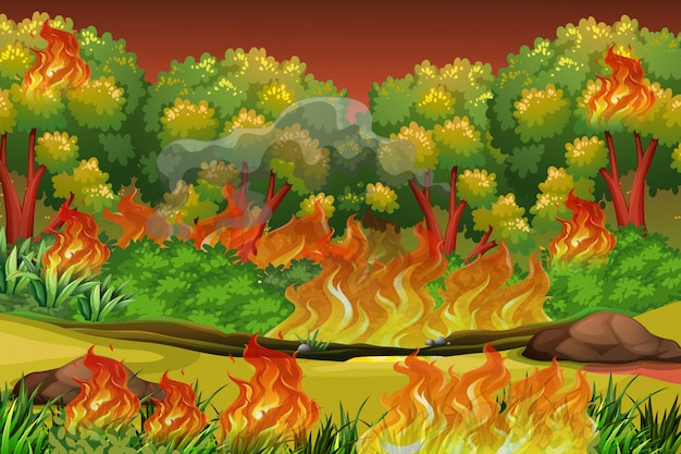 Dangerous forest fire background