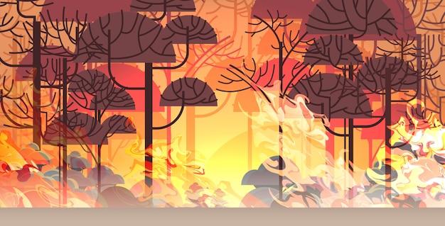 위험한 산불 덤불 화재 개발 마른 숲 불타는 나무 지구 온난화 자연 재해 개념 강렬한 주황색 불꽃 수평