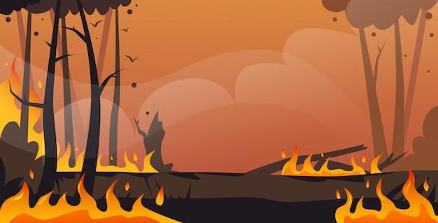 위험한 산불 덤불 화재 개발 마른 숲 불타는 나무 지구 온난화 자연 재해 생태 문제 개념 강렬한 주황색 불꽃 수평