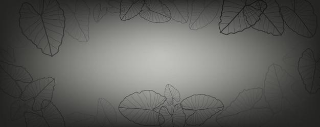 Alocasia macrorrhizos 리프 라인 아트 프레임이 있는 짙은 회색 및 검정색 배경