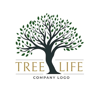Dark green leaves tree life logo
