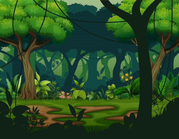 Dark rainforest with trees background Premium Vector