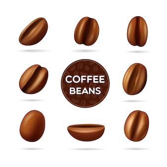 Dark roasted coffee beans set in different positions and round label