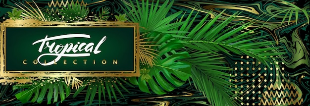 Dark tropical background with green leaves and golden abstract elements. vector template