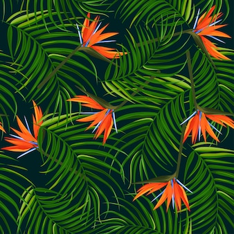 Dark tropical background.