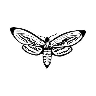 メンガタスズメは白地にインクで死にます。ハロウィーンのデザイン要素。