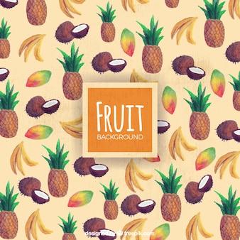 열 대 과일의 장식 배경