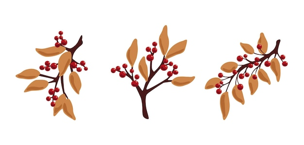 Decorative branches with berries and leaves autumn winter branches