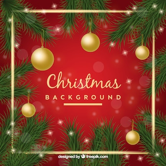 Decorative christmas background with natural elements