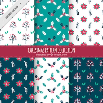 Decorative christmas patterns with different types of flowers