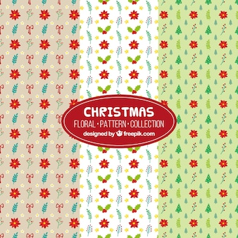 Decorative christmas patterns with red flowers