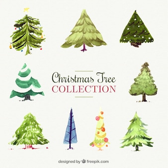 Decorative christmas trees painted with watercolor