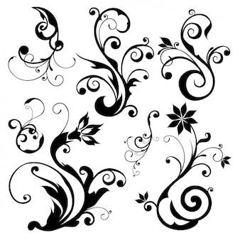 Decorative elements collection