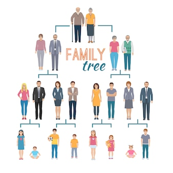Decorative flat illustration of genealogy tree chart