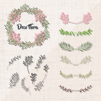 装飾的な花の要素のコレクション