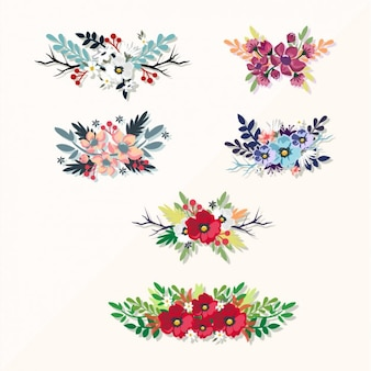 Decorative floral elements collection