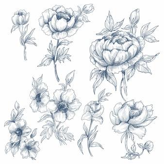 Abbozzo floreale decorativo set bellissimo design