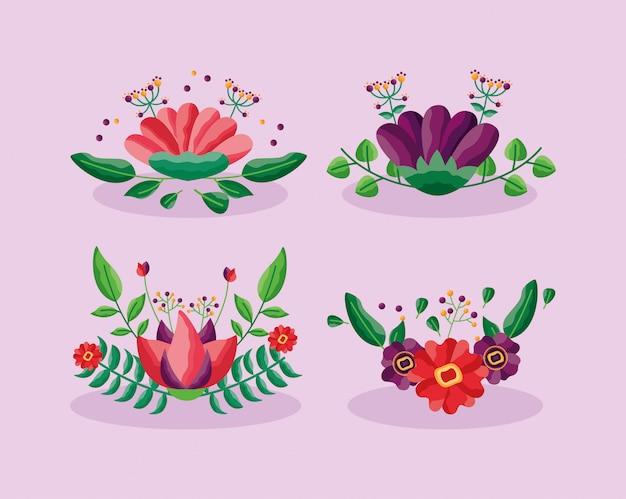 Il fogliame decorativo dei fiori lascia il delicato