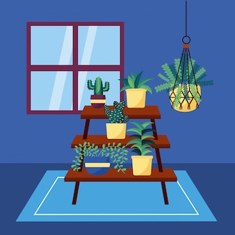 Decorative house plants interior design