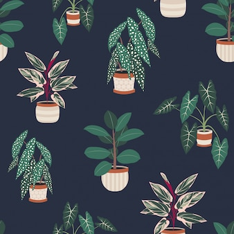 Decorative house plants in pots seamless pattern