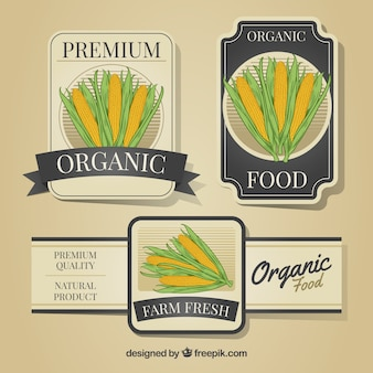 Decorative labels with corncobs