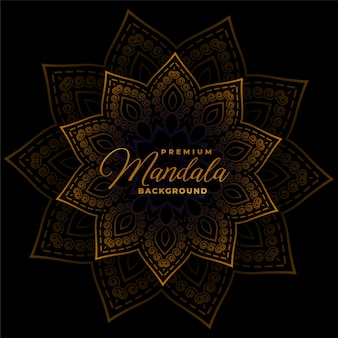 Decorative mandala on dark black background